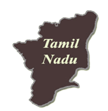 tamil nadu tn board